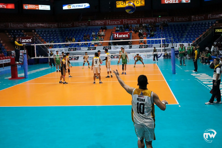 tiger spikers serving